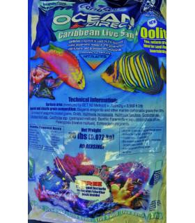 Грунт Carib Sea Ocean Direct Oolite живой оолитовый песок 0,1-0,7мм 9,07кг